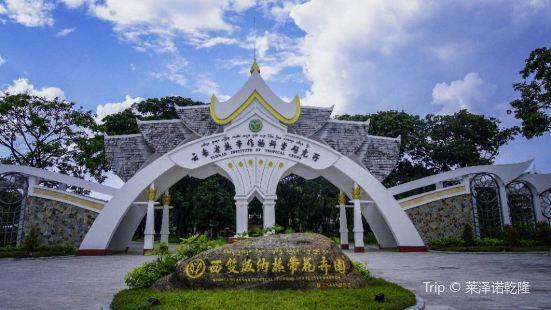 Tropical Flower Garden