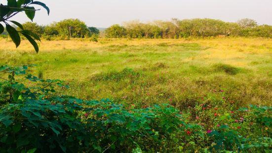 Hunanleishui National Wetland Park
