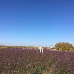 內蒙古吉雅泰休閒農業風情園用戶圖片