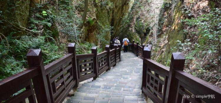 翠微峰國家森林公園1