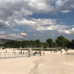Tuileries Garden User Photo