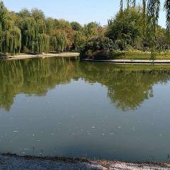 Lianchi Park User Photo