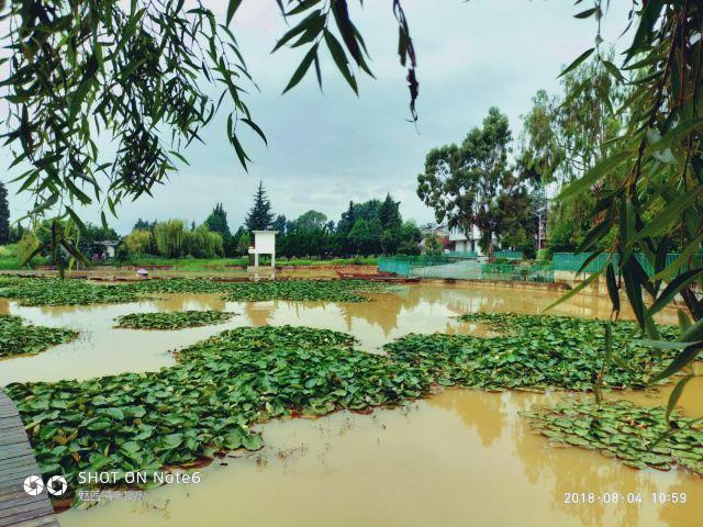 Yueliangwan Wetland Park