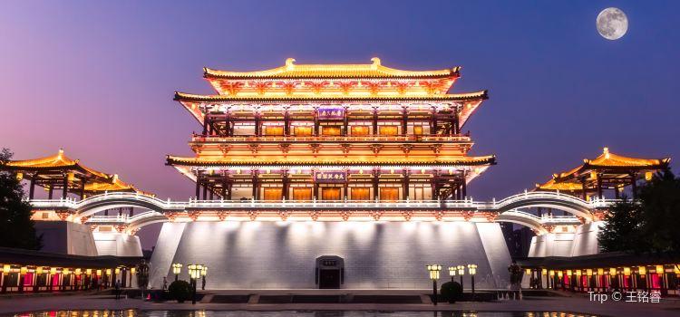 Tang Dynasty Furong Garden1