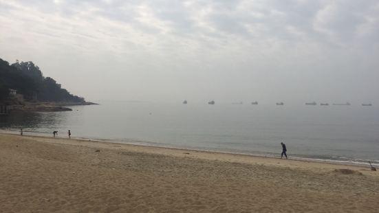 沙魚湧沙灘