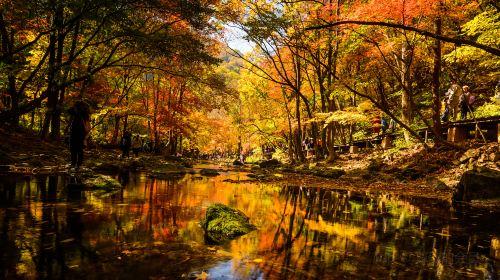 관문산 국가삼림공원
