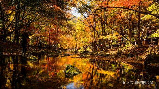 關門山國家森林公園