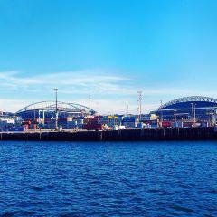 Argosy Cruises - Seattle Waterfront User Photo