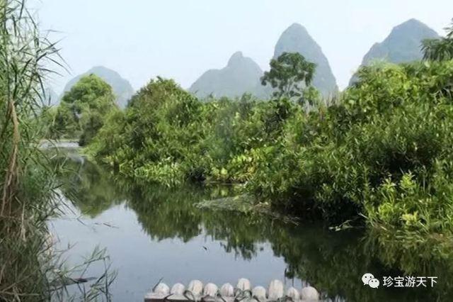 廣西6|陽朔——遇龍河