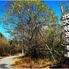 Chuhuo Special Scenic Area User Photo