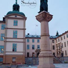 Gustaf Adolf's Square User Photo