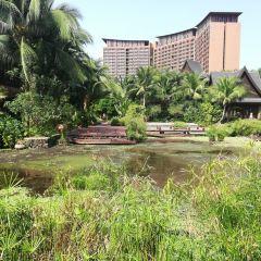 Sanya Hongshulin Park User Photo