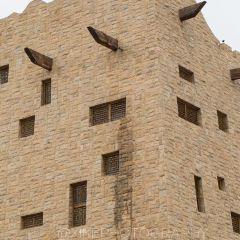 沙漠博物館用戶圖片