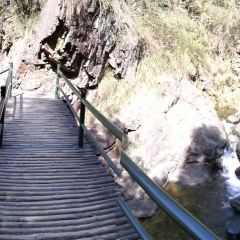 大奇山國家森林公園用戶圖片
