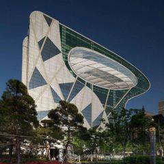 首爾市政廳用戶圖片
