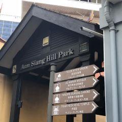 Ann Siang Hill Park User Photo