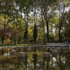 둥자오 공원 여행 사진