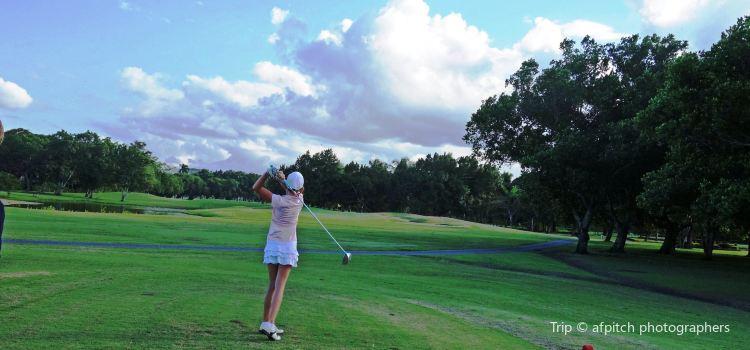 Playa Dorada Golf2