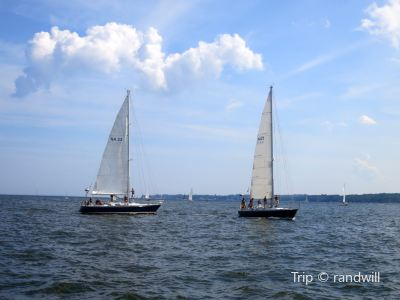 Schooner Woodwind Sailing Cruises