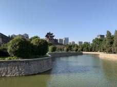 丛台公园-邯郸-T00825128