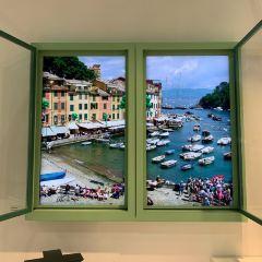 Green Art Gallery User Photo