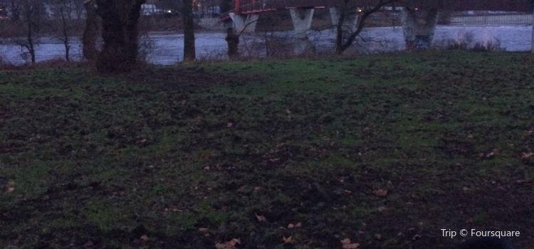 Stadtpark Rotehorn2