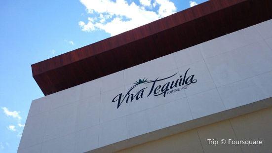 Viva Tequila Experience