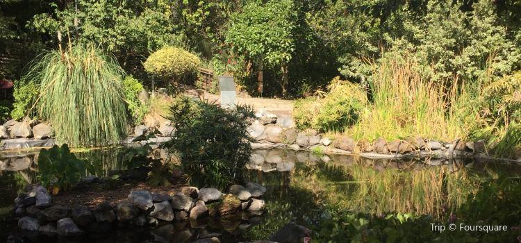 Jardín Botánico de Quito