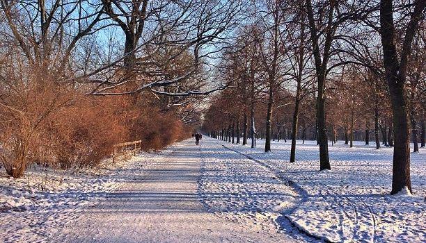 Großer Garten Dresden3
