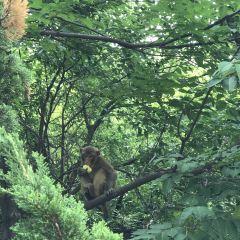 루위에후 습지공원 여행 사진