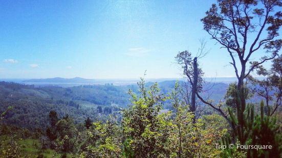 Reserva Nacional Nonguen