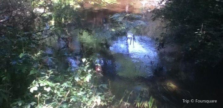 Mashpee River Reservation2
