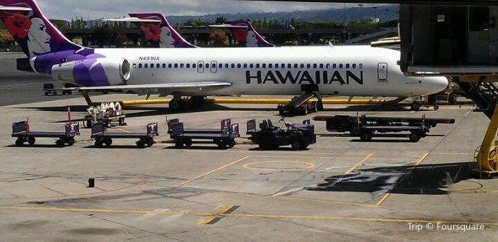 Hawaiian Airlines3