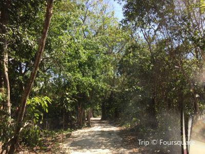 Ixchel Jungle Spa