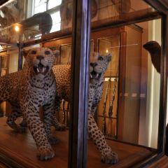 Musée de la chasse et de la nature User Photo