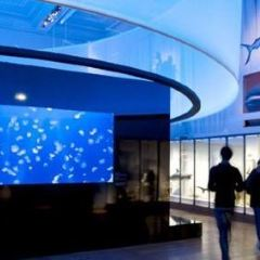 Museum of the Sea User Photo