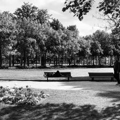 Avenue des Champs-Élysées User Photo