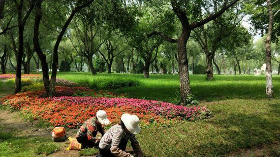 Wanliu Park