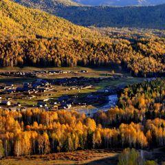 禾木風景區用戶圖片