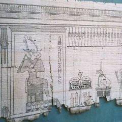 阿米特博物館用戶圖片