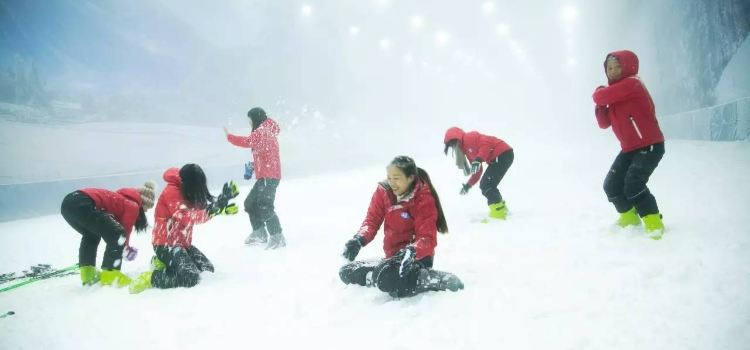 冰河世紀滑雪場