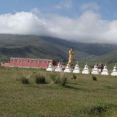 Jiayi Temple User Photo
