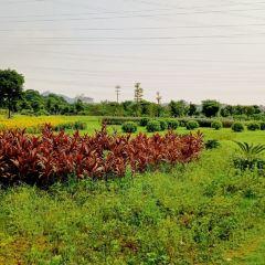 玉泉農莊用戶圖片