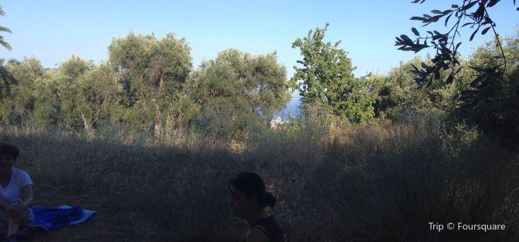 Parc Naturel Départemental d'Estienne d'Orves2