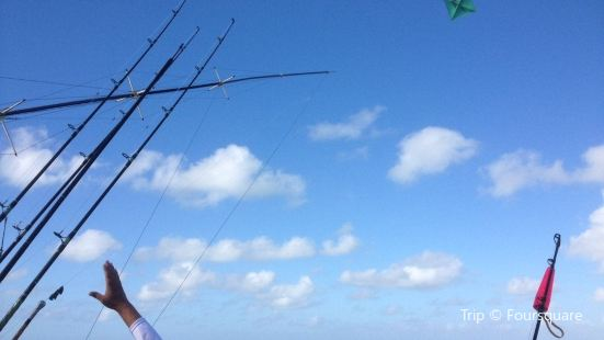 Blue Waters II Fishing Charters
