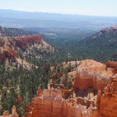 Dixie National Forest User Photo