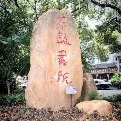 Shigu Academy User Photo