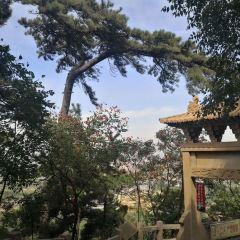 Jingzhong Mountain User Photo