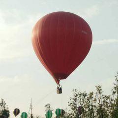 華僑城歡樂田園用戶圖片