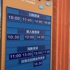 西寧新華聯童夢樂園用戶圖片